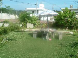 具志頭のお庭