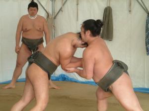 相撲朝稽古