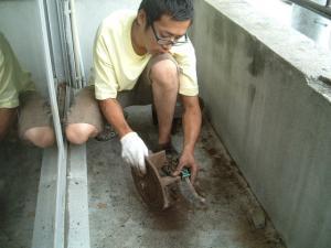 焙煎機の清掃5