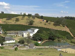 コンティニ農園1