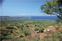 マラウィ湖