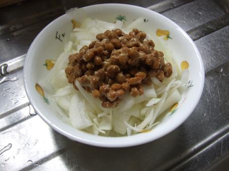 090123 nattou onion