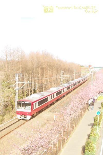 D110441-2.jpg
