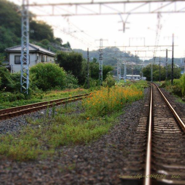 PA031030.jpg