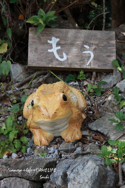 okinawa10-153.jpg