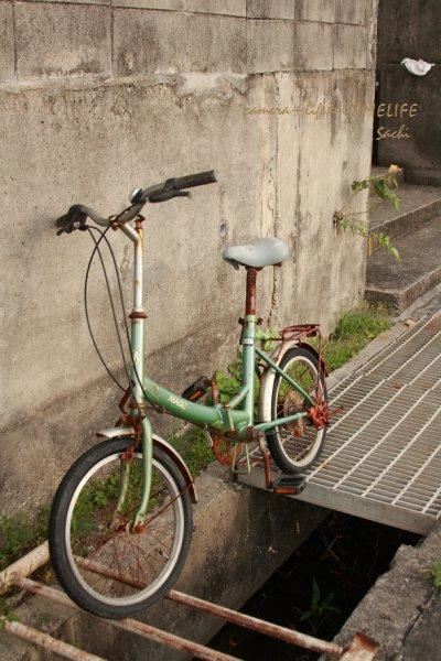 okinawa10-203.jpg