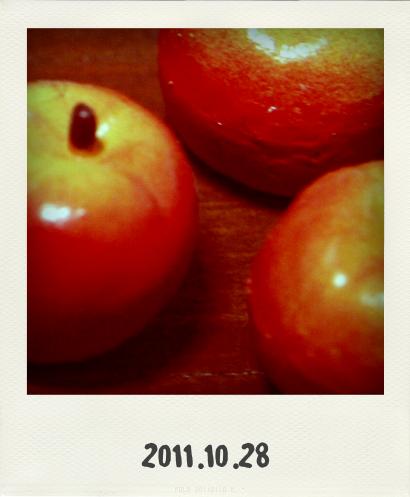 20111028@Pola(20111028121621).png