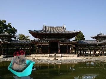 くぅちゃん京都へお参りに行く