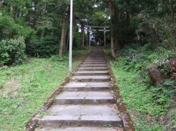 20090607_hana05.jpg