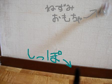 20051101002618.jpg