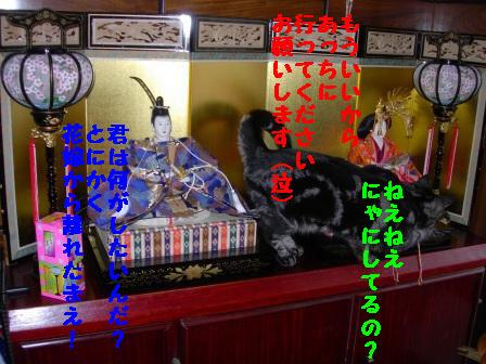 20060303230933.jpg
