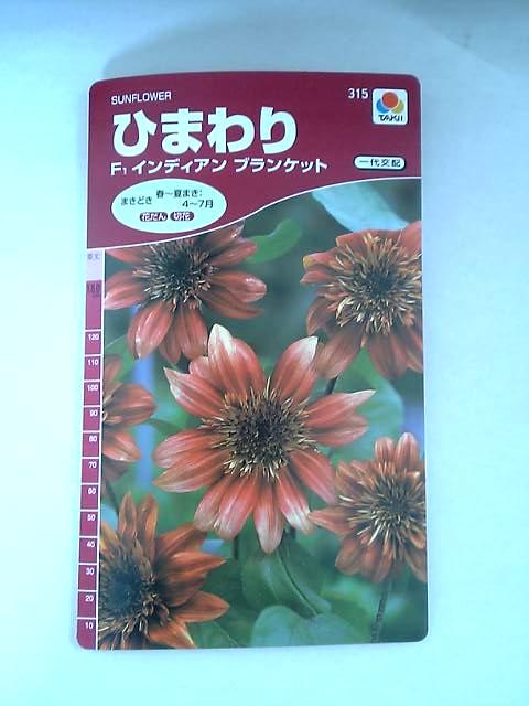 20050811(9).jpg