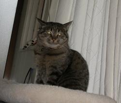2006-01-10-036.jpg
