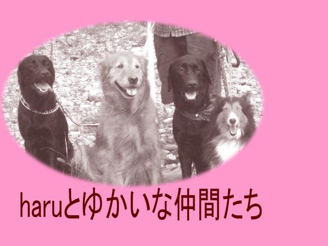 4wanmoji-1.jpg