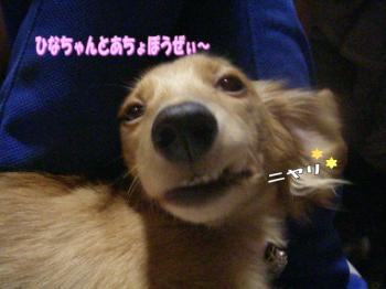 atyoimage4.jpg