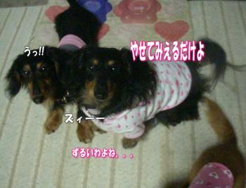 mimi5image4.jpg