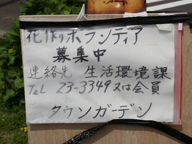 068_20100608.jpg