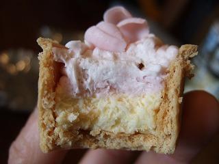 チーズケーキ桜