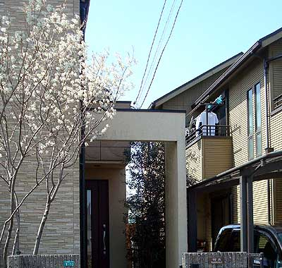 20100411庭