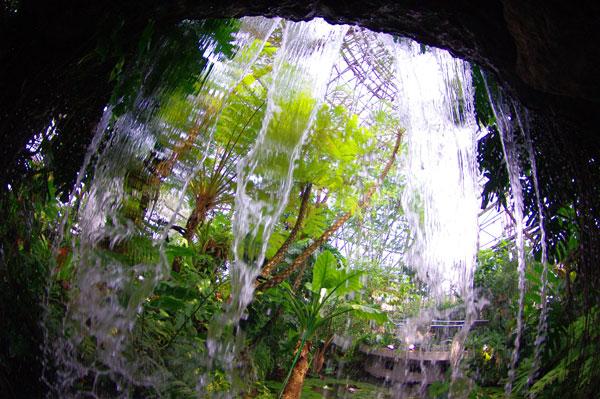 滝の裏側。