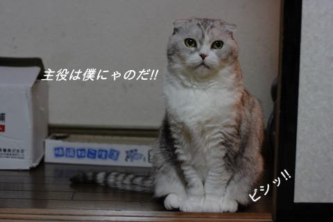IMG_3420-1.jpg