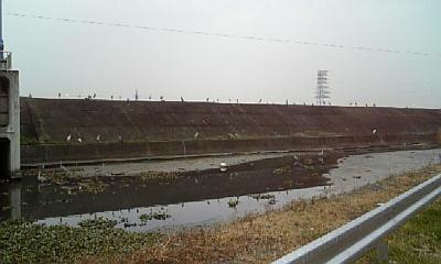 20080111143054