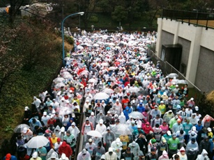 東京マラソン (2)