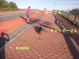 20110927-2.jpg