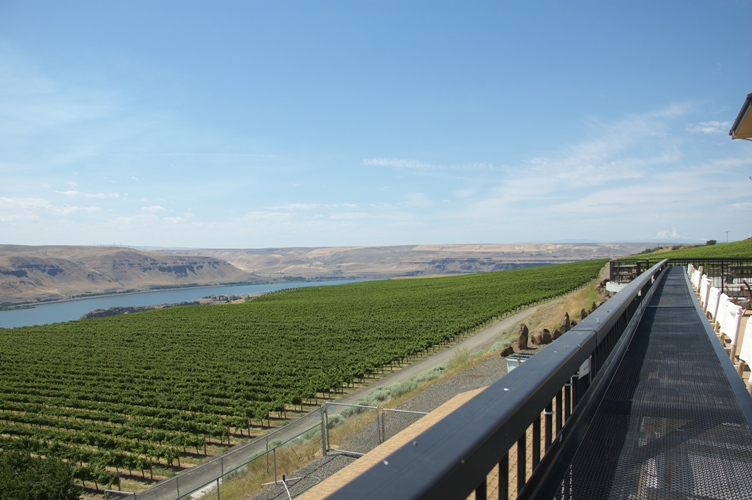 Maryhill Winery 5