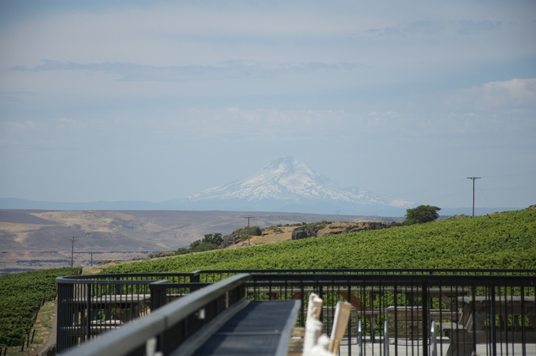 Maryhill Winery 6