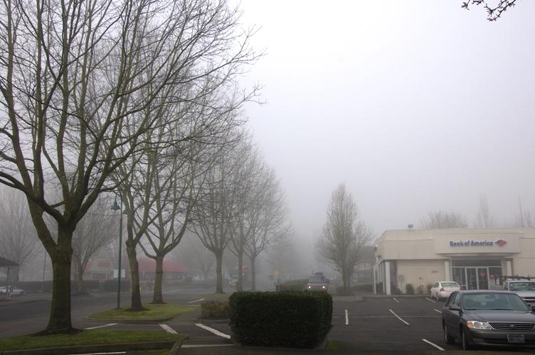 霧っぽい感じ1