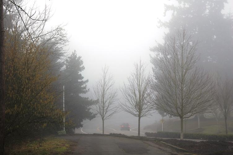 霧っぽい感じ3