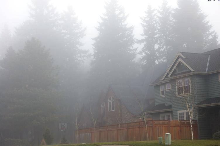 霧っぽい感じ4