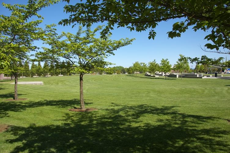 Wilsonville Town Center Park2