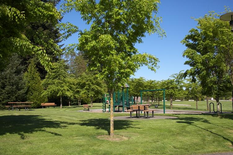 Wilsonville Town Center Park4