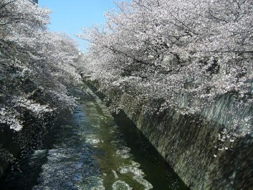 江戸川公園1