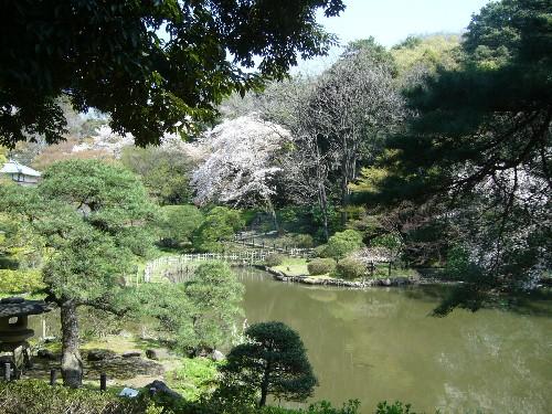 新江戸川公園2