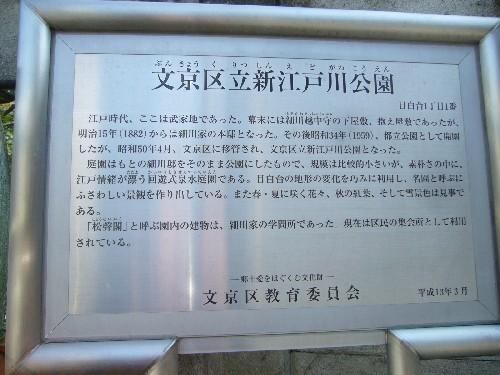 新江戸川公園3