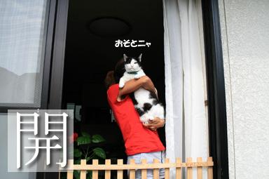 はいよ♪ママ抱っこ♪ちぃくん、高い高~い♪