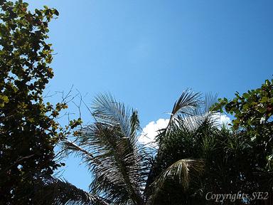パトンビーチの空