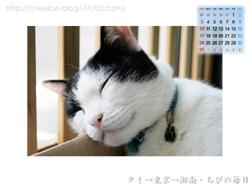 Chibi壁紙カレンダー2008年8月その2