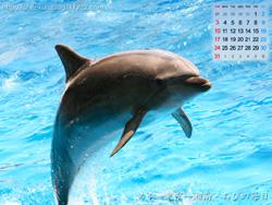 湘南風景壁紙カレンダー2008年7月その2