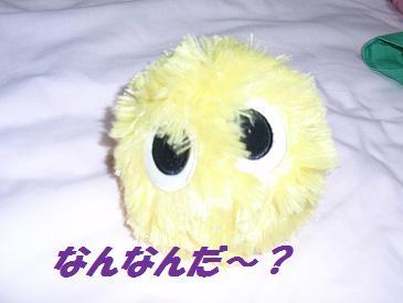 001 おもちゃ