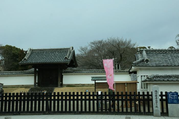 20120326-6.jpg