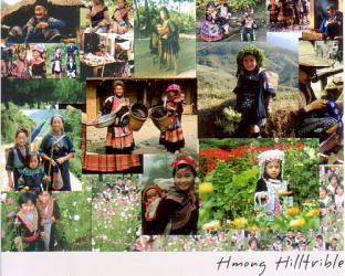 HMONG族