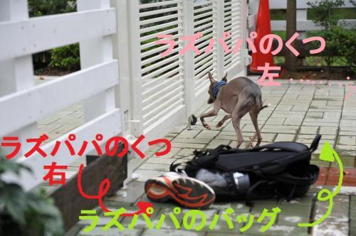 DSC_0361_convert_20090721002948.jpg