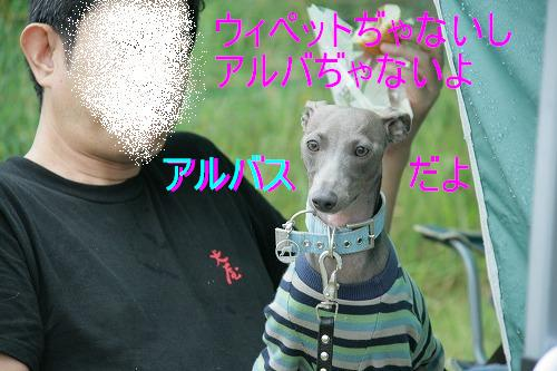 IMG_0783.jpg