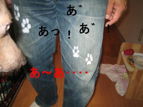 IMG_4978_convert_20090416142942.jpg