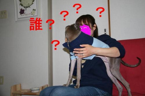 IMG_6495_convert_20090310153930.jpg