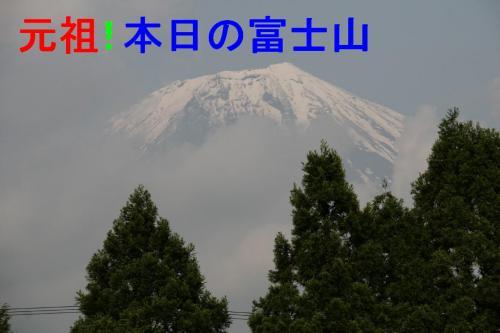 IMG_8009_convert_20090528150526.jpg